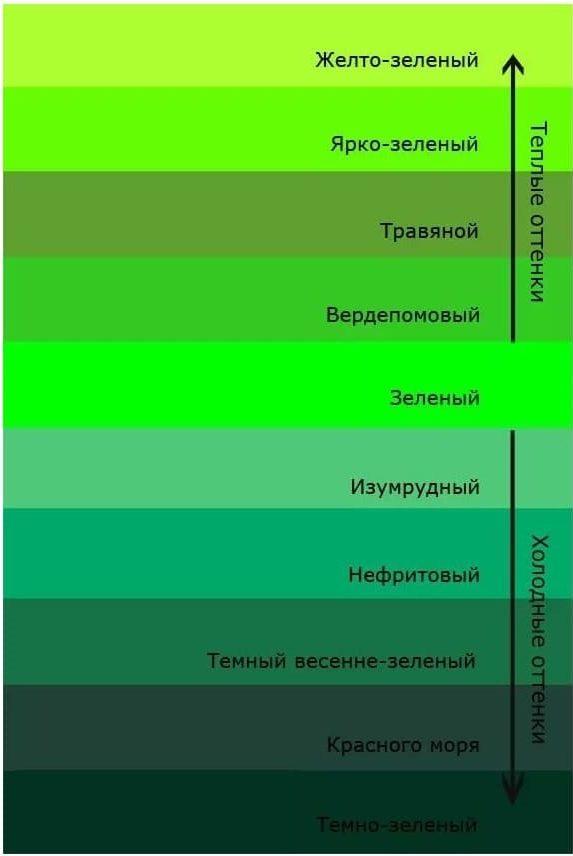 Основная палитра зеленого цвета